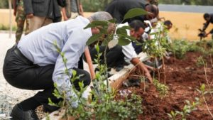 Ethiopian culture loves being first. This is a picture of Ethiopian men planting trees for Green Legacy